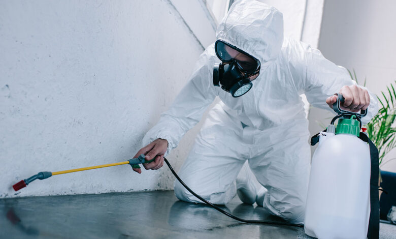 Photo of Best Quality Pest Control Treatments and Pesticides