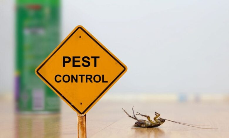 Photo of Types of Bugs Existence in Boise Valley – Useful Remedies & Instructions